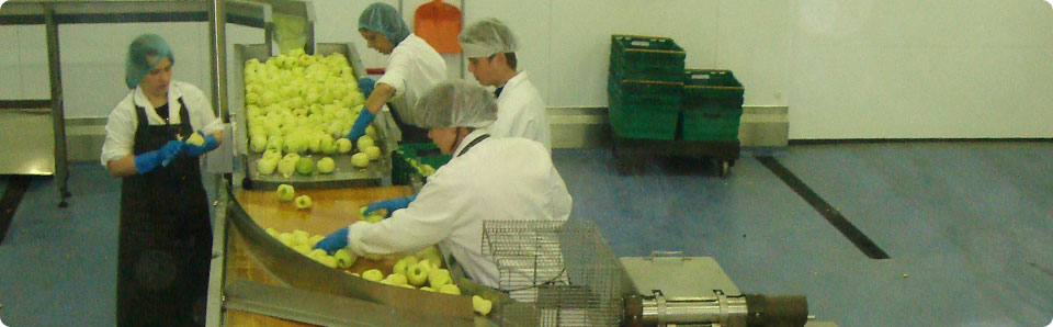 apple processing